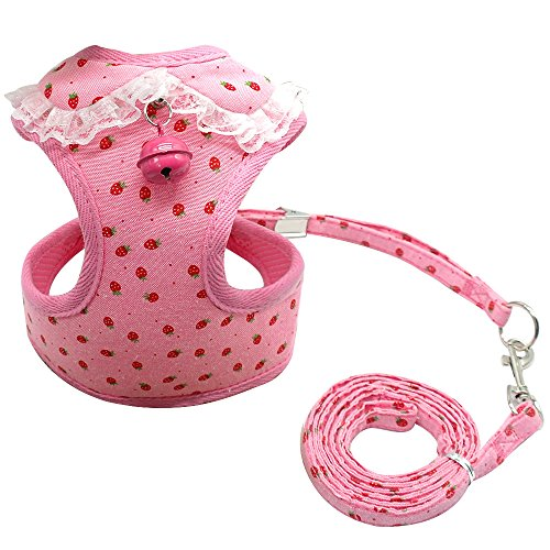 Didog Adjustable Pet Mesh Vest Harness and Leash Set with Cute Bell for Puppy Small Medium Dogs and Cats ()