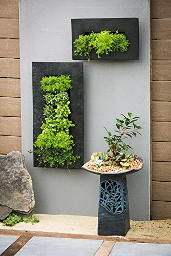 Evergreen Black Zinc 3 Pocket Metal Wall Planter Buy