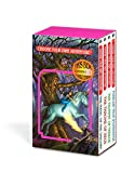 img - for Magick Box (Choose Your Own Adventure) book / textbook / text book