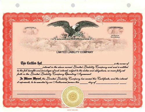 100 Red CorpKit Standard Wording Limited Liability Compan...