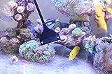 QANVEE Aluminum Magnesium Alloy Aquarium Scraper