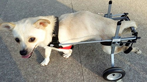 Adjustable Dog Wheelchair (XS) , Weight 5 to 20 lbs, Hip Height:9'--14', Hind legs Rehabilitation