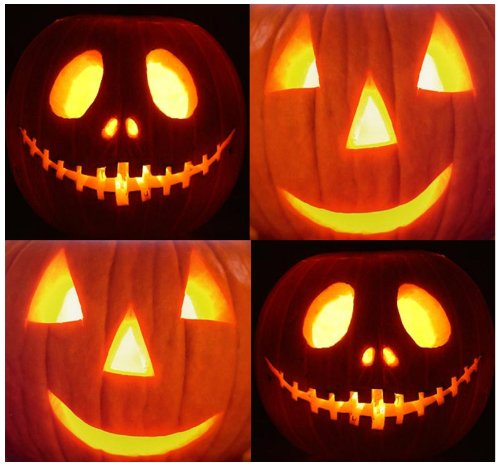 Jack o lantern pumpkin seeds perfect for carving bright