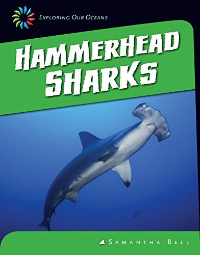 Hammerhead Sharks (21st Century Skills Library: Exploring Our ()