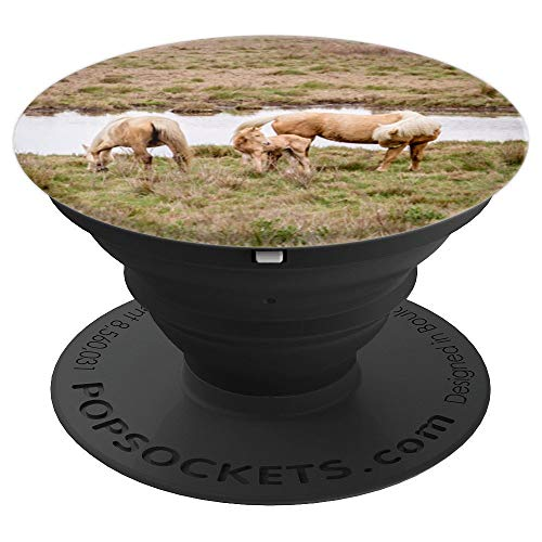 Assateague Ponies of Misty and Stormy Fame - PopSockets Grip and Stand for Phones and - Misty Pony