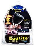 Egglite with Transformer 20 Watt