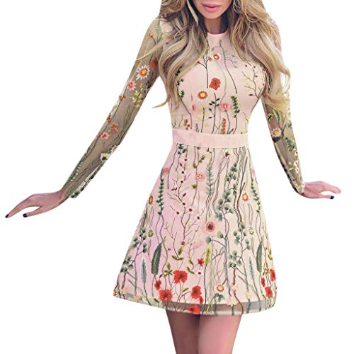 Double Layer Frocks (QIQIU Womens Sexy Floral Embroidered Print Fashion Perspective Long Sleeve Lace Mesh Double Layer Mini Dress)