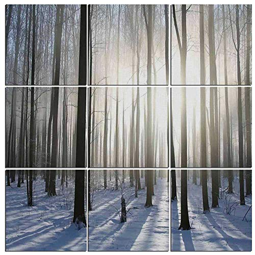 Arts Wall Art Canvas Woodland Decor 9 Panels Modern Canvas Painting Prints Giclee Prints for Home Decor Framed Ready to Hang,Wintertime Forest on a December Morning Snowy Sunshine Shadows Trunk,60