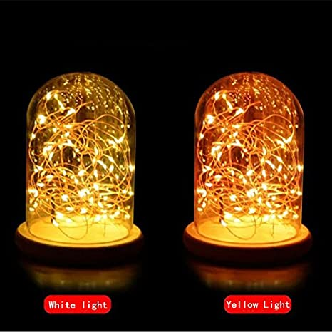 Led Luxury Glass Bell Jar Dome With String Light Table Lamp