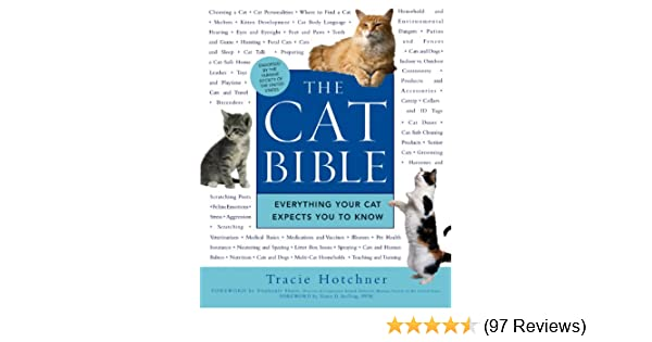 the cat bible everything your cat expects you to know