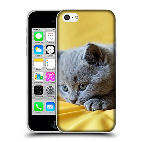 Just Phone Cases Coque de Protection TPU Silicone Case pour // V00004297 Jouer chaton gris // Apple iPhone 5C