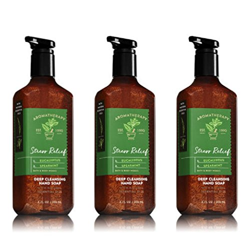 Bath & Body Works Aromatherapy Stress Relief Eucalyptus Spearmint Hand Soap (2018 Release) - 3 Pack ()