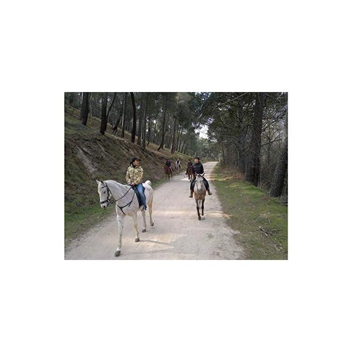 ✅ 1 estancia o 1 menú o 1 actividad de bienestar o 1 actividad de aventura para 2 personas a elegir entre 6.500 actividades en España, Andorra y Francia ✅ Selección de colaboradores de calidad, evaluados continuamente. Válidez 3 años y 3 meses. Cambio Gratuito e ilimitado. ✅ El cofre regalo contiene una tarjeta y una guía con todas las experiencias que puede consultar a través de nuestra web. La Tarjeta le permite el disfrute de la experiencia elegida entre las diferentes opciones que aparecen en la guía. En dicha Tarjeta Regalo figura un código que permitirá hacer efectiva la reserva y disfrutar de la misma.