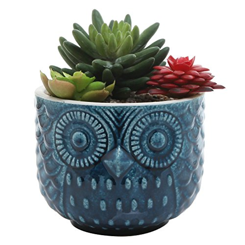 Whimsical Textured Owl Shaped Succulent Ceramic Planter Pot w/ Blue Glossy Finish