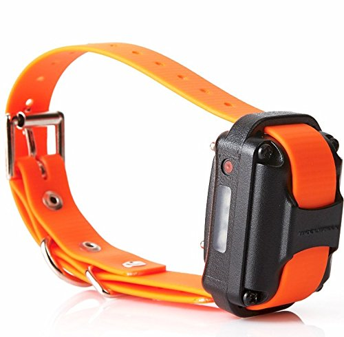 Cheap Educator Additional Receiver and Collar for Pro Advanced Dog Training Collar System, Orange