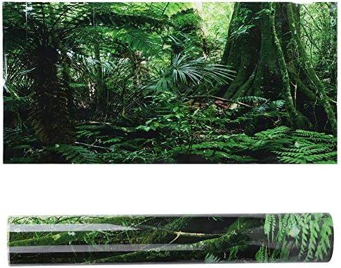 OhhGo PVC Reptiel Doos Regenwoud Achtergrond Poster Vis Tank Muur Foto Schilderen Decoratie Zelfklevende Sticker 6141cm