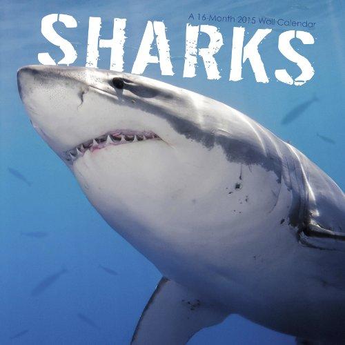 2015 shark calendar - 8