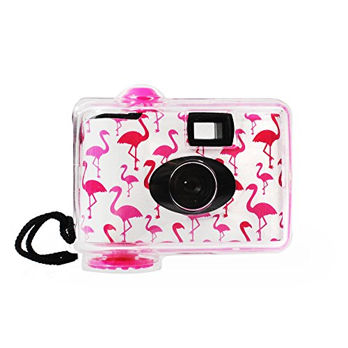 LMNT Disposable Underwater Camera, Waterproof Disposable Camera,Throwaway Camera up to 16ft with 17 exposures 35mm film (Flamingo)