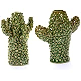 Set di 2 Vasi da fiori a forma di cactus, mini
