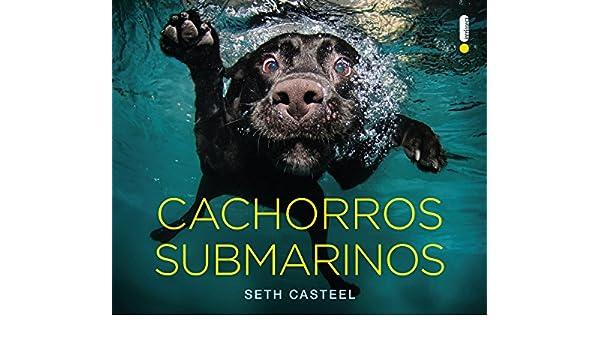 cachorros submarinos portuguese edition