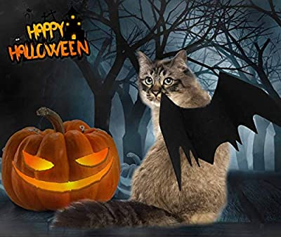 Cat Halloween Costume - Cat Bat Wings - Pet Bat Costume for Small Dogs and Cats with 2 Pcs Pumpkin Bell