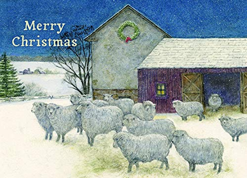 Legacy Deluxe Boxed Holiday/Christmas Cards with Coordinating Envelopes, 20-Count, Christmas Sheep ()