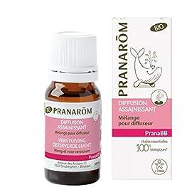 Pranarôm – Pranabb – Diffusion Assainissant Bio Eco – Mélange pour Diffuseur Spécial Bébé – Purifie L'air – 10 ml
