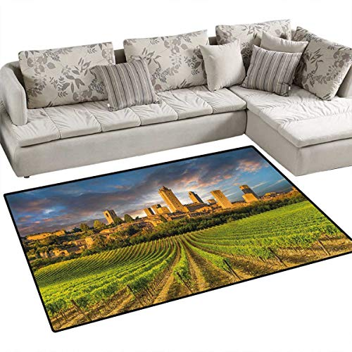 Italy Bath Mats Carpet Vineyards of San Gimignano Tuscany Historic Architecture Dramatic Sky Clouds Door Mats for Inside Non Slip Backing 36