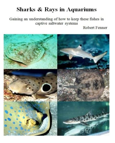 (Sharks & Rays in Aquariums: Gaining an understanding of how to keep these fishes in captive saltwater systems (Aquarium Success) (Volume 3))