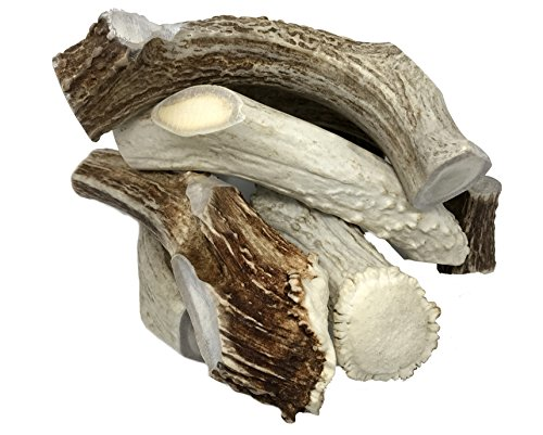 BY THE POUND- JUMBO - THICK- Premium Deer Antler Dog Chews - All Natural- WhiteTail Naturals Brand-