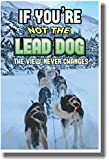 If You're Not the Lead Dog the View Never Changes - NEW Classroom Motivational Poster