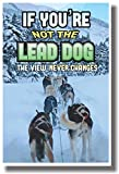 If You're Not the Lead Dog the View Never Changes – NEW Classroom Motivational Poster