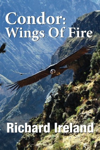 Read Online Condor: Wings of Fire pdf