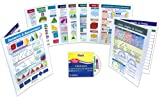 NewPath Learning 10 Piece Geometry and Measurement Visual Learning Guides Set, Grade 3-6