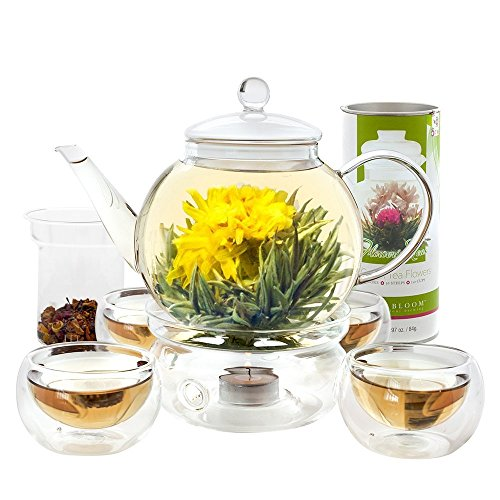 Teabloom Teapot Gift Set – Stovetop Safe Glass Teapot with 2 Blooming Teas & Removable Glass Infuser for Loose Leaf Tea – 40 oz /1200 ml