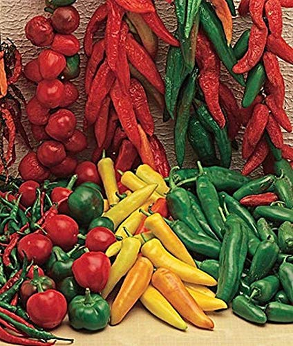 MEXICAN HOT MIX PEPPER Seeds - A mixture of 13 varieties !!hot and spicy mixture(25 - Seeds)