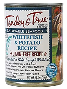 Tender & True Ocean Whitefish & Potato Recipe Canned Dog Food, 13.2 oz, Case of 12