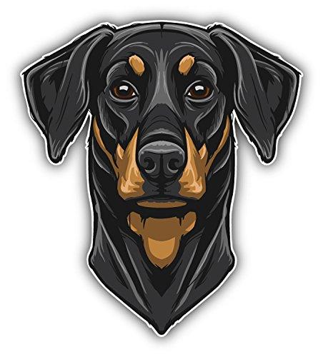 Doberman Pinscher Head Mascot Autocollant Voiture Decoration de Vinyle 10 X 12 cm