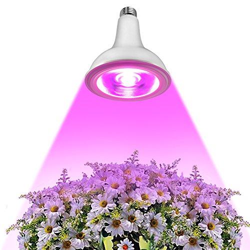 effect of led light on plants pdf