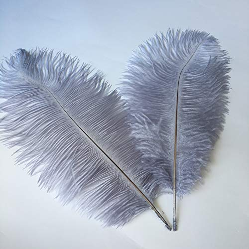 1 Metre Rooster Hackle Coque Feather Fringe Craft Trim Sewing Costume Millinery