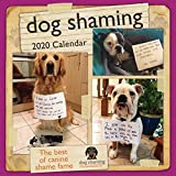 Books : Dog Shaming 2020 Wall Calendar