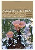 Ascomycete Fungi of North America: A Mushroom Reference Guide (Corrie Herring Hooks Series)