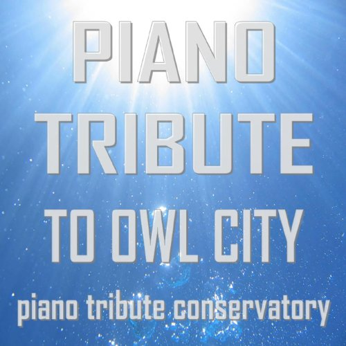 Amazon Piano Tribute To Owl City Piano Tribute Conservatory