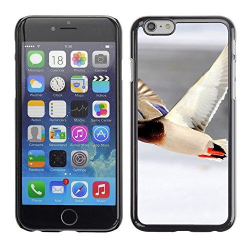 "Premio Sottile Slim Cassa Custodia Case Cover Shell // V00003307 canard en vol // Apple iPhone 6 6S 6G 4.7"""