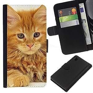 Maine Coon Ginger Orange Garfield Cat - la tarjeta de Crédito Slots PU Funda de cuero Monedero caso cubierta de piel Sony Xperia Z1 L39