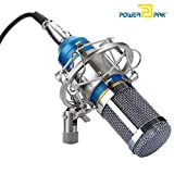 Generic 57000928MG Silica Gel Professional Condenser Microphone Sound Studio Recording Dynamic (Works With Phantom Power Supply Or Sound Card Only)