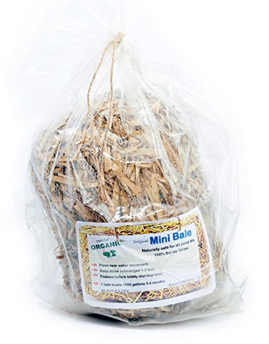 Barley Straw Mini Bale for Ponds