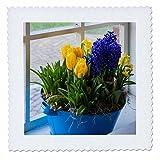 3dRose Danita Delimont - Flowers - Window with spring flower arrangement - 16x16 inch quilt square (qs_257775_6)
