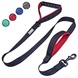 Vivaglory Dog Training Leash with 2 Padded Handles, Heavy Duty 6ft Long Reflective Safety Traffic Handle Leash Walking Lead for Medium to Large Dogs, Black