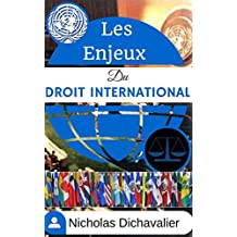 Les Enjeux du Droit International (French Edition)